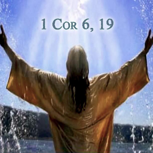 Amare DIO è amare l'amore: L'uomo non osi separare ciò che DIO ha unito